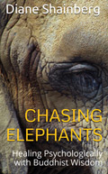 ChasingElephants-Cover-small-10-09-10